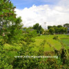 Ayala Hillside, Quezon City – Nice Location