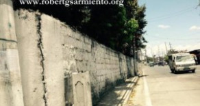 Quirino Avenue, Paranaque – Commercial Lot