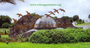 Ayala Westgrove Heights – Lot for Sale