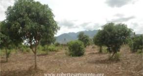 Lipa, Batangas City – Property for Development