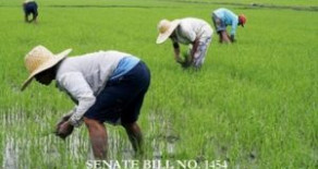 Senate Bill No. 1454 – Agricultural Free Patent Act of 2017
